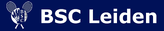 BSC Leiden